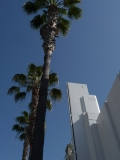 This is what California is to me--sun, sky, palm trees, Art Deco