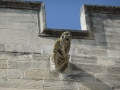 A real gargoyle in Avignon, France