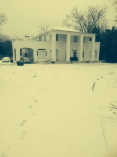 Brookhaven snow
