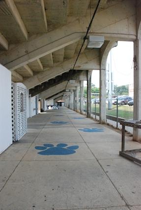 Ray Stadium. Meridian, Lauderdale County. Jennfier Baughn, MDAH 9.10.2013