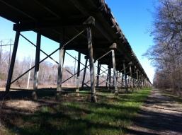 Hwy 26 Pascagoula River Bridge George County, MS 1-2015 (8)