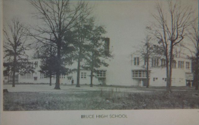 Bruce High School yearbook