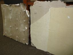 Rock Lath. Back and Front samples 2010
