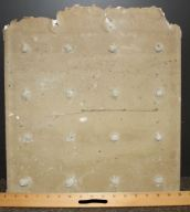 Rock Lath. Back of sample with scale 2010