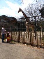 Jackson Zoo 201402