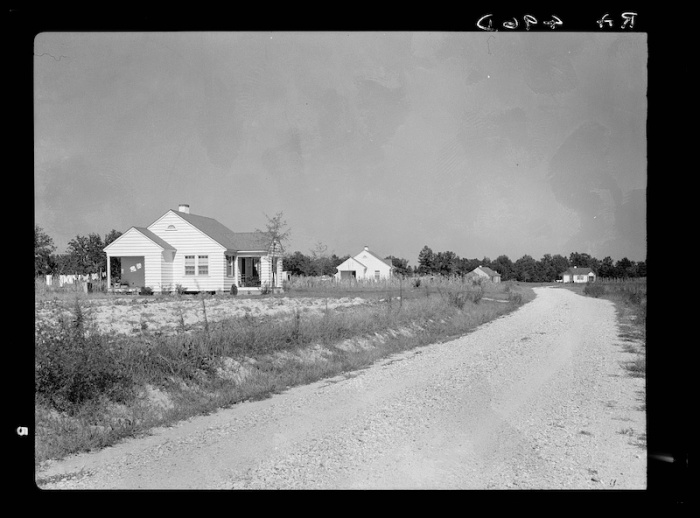 tupelo homesteads 3